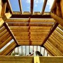 Removal of existing roof. Replaced using steel frames and a forest of timber.